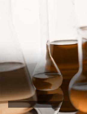 Новогодний праздник от кафедры химии
